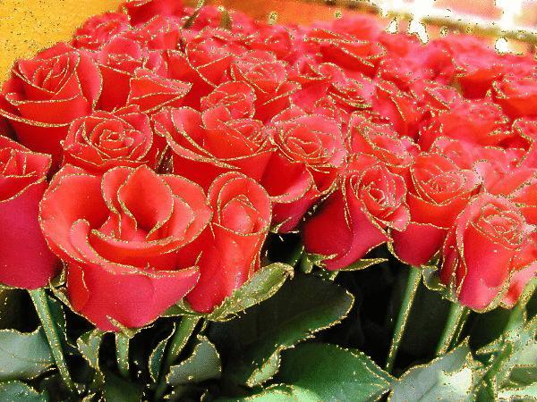 Мерцающие розы. Красивые анимации цветов.
